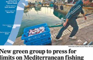 Save the Fish works to protect Mediterranean sealife