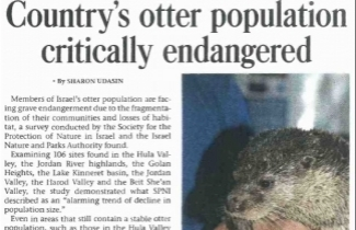 Israel's otter population critically endangered