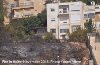 Fire in Haifa. Photo by Yoram Yihye