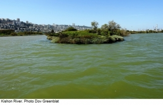 Kishon River. Photo Dov Greenblat