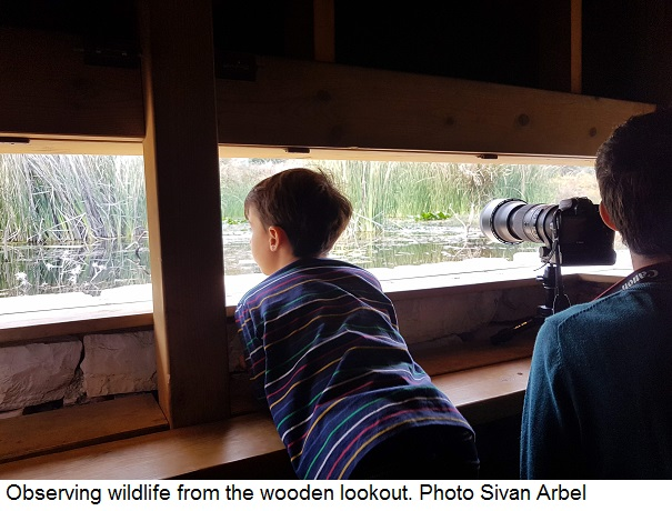 Observing wildlife from the wooden lookout, Photo Sivan Arbel