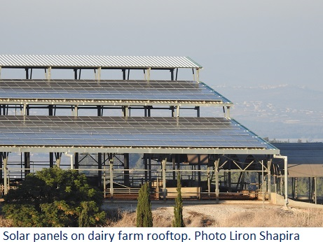 Solar panels on dairy farm rooftop. Photo Liron Shapira SPNI