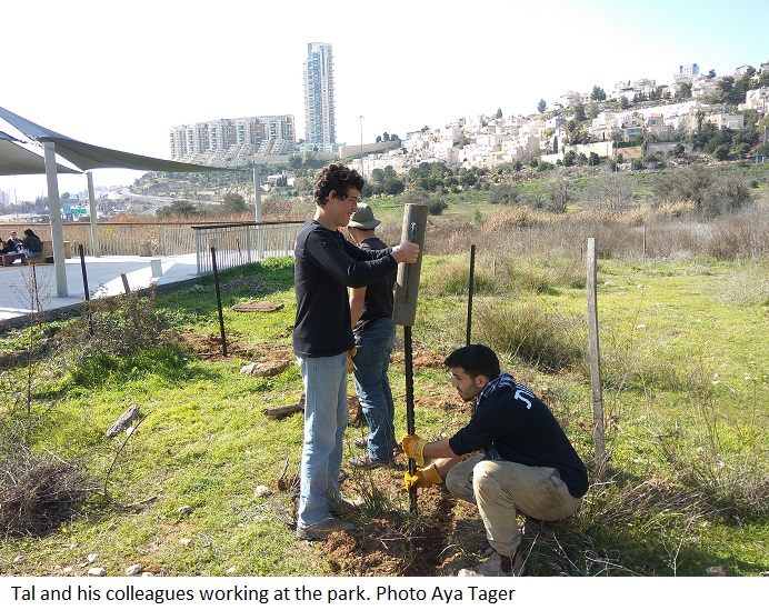 Tal and his colleagues working at the park, Photo Aya Tager
