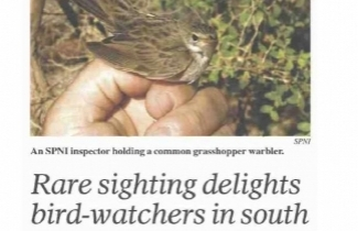 Rare sighting delights bird-watchers Haaretz