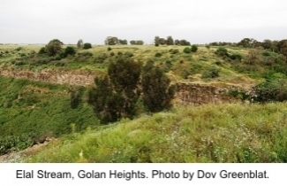 Elal Stream in the Golan Heights. Photo: Dov Greenblat
