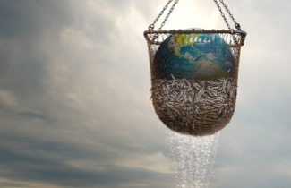 Planet earth in a net with fish freshly caught from the ocean